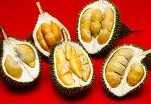 Sinnaco Durian Specialist Durian Buffet PJ