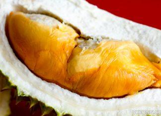 Red Prawn Durian Globalmax Trading Kuantan
