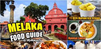 Melaka Food Guide Halal Food to Eat in Melaka